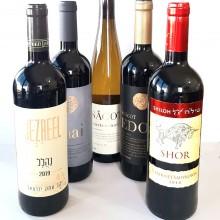 בקבוקי יין- ניתן להזמין משלוח רק באזור גוש עציון